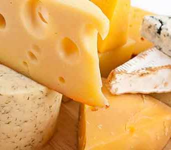 Book-Protein-Cheese-Header